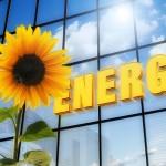 ひまわりの花と太陽エネルギー