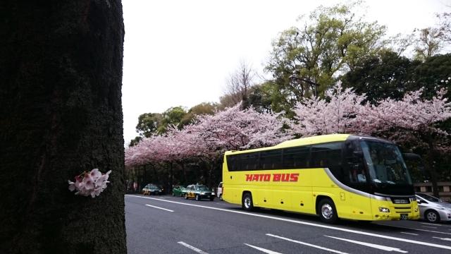 東京観光は、はとバス