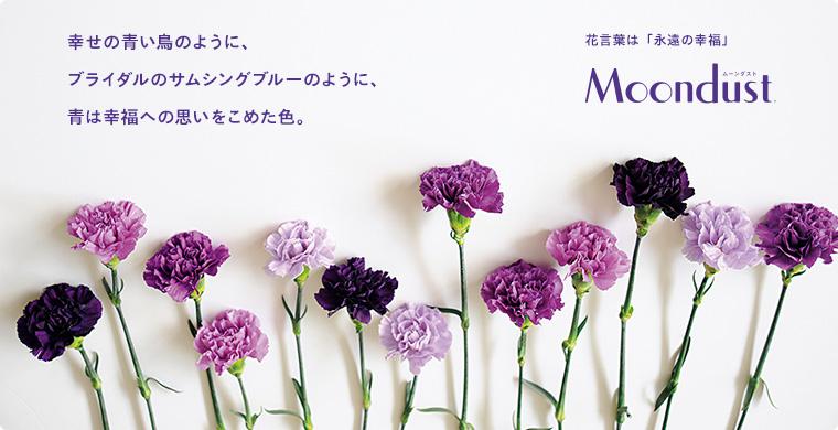 花言葉は永遠の幸福